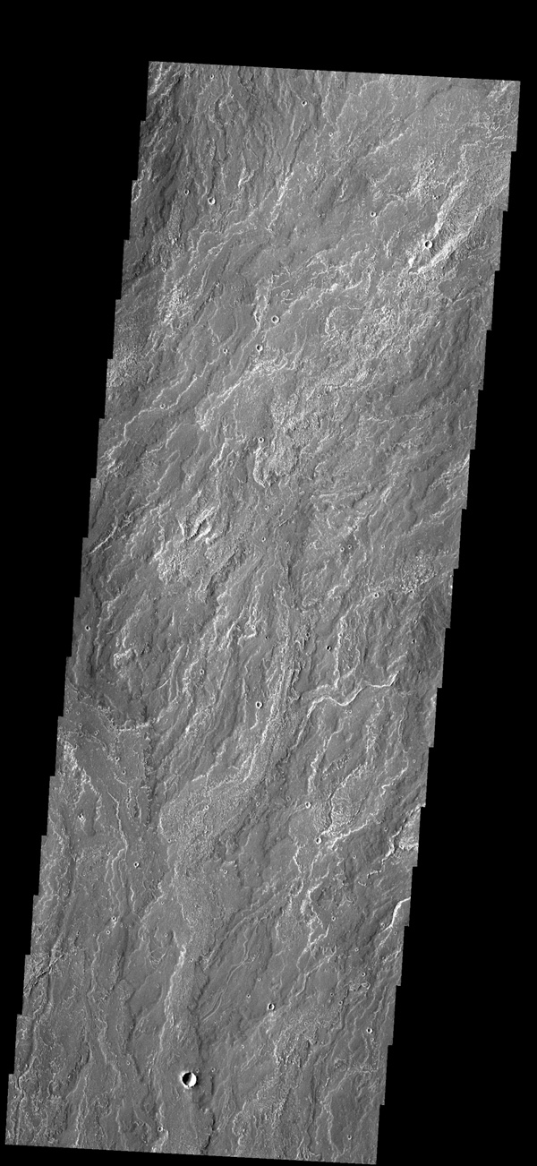 This image captured by NASA's 2001 Mars Odyssey spacecraft shows a small portion of the lava flows that make up Daedalia Planum.