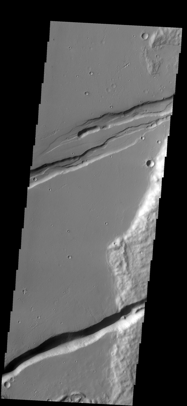 The linear depressions in this image captured by NASA's 2001 Mars Odyssey spacecraft are part of Memnonia Foassae.