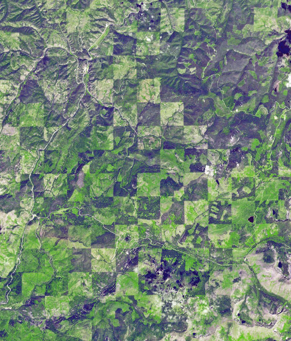 Logging operations have left a striking checkerboard pattern in the landscape along the Idaho-Montana border, sandwiched between Clearwater and Bitterroot National Forests as seen in this image acquired by NASA's Terra spacecraft.