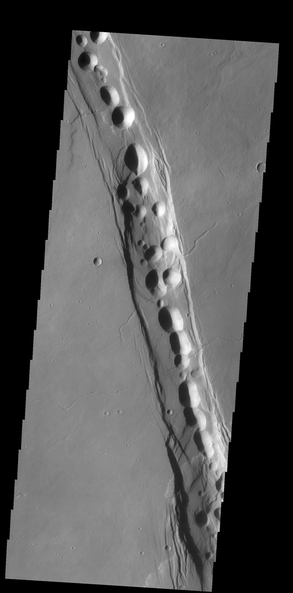 The complex fracture in this image captured by NASA's 2001 Mars Odyssey spacecraft is one of the many graben that surround Alba Mons.