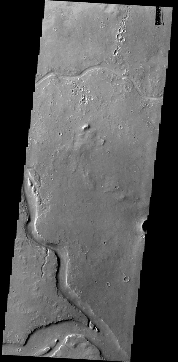 The channels in this image taken by NASA's 2001 Mars Odyssey spacecraft are part of Granicus Valles, located west of the Elysium volcanic complex.