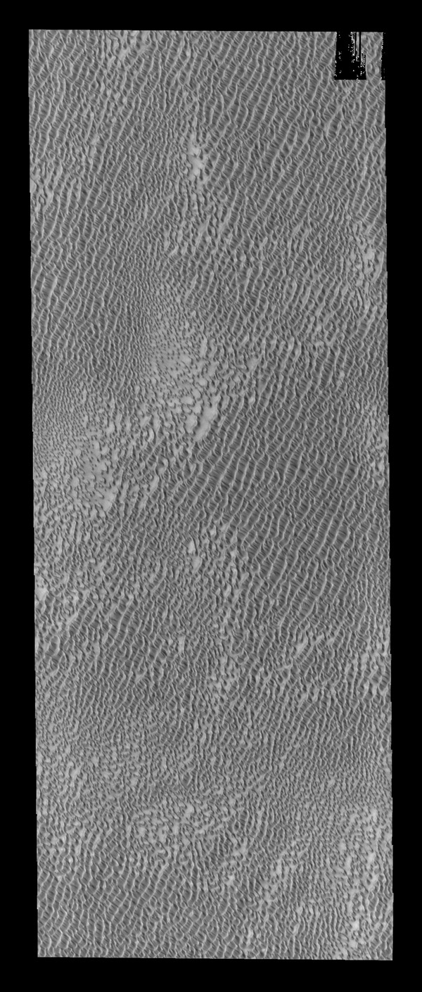 This image from NASA's 2001 Mars Odyssey spacecraf shows part of Aspledon Undae, one of several dune fields near the north pole. The term Undae means dunes.