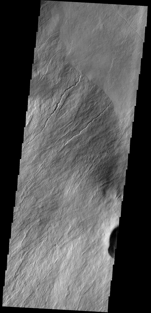 This image captured by NASA's 2001 Mars Odyssey spacecraft shows a portion of Olympus Rupes, part of the steep margin surrounding Olympus Mons. The term rupes means scarp.