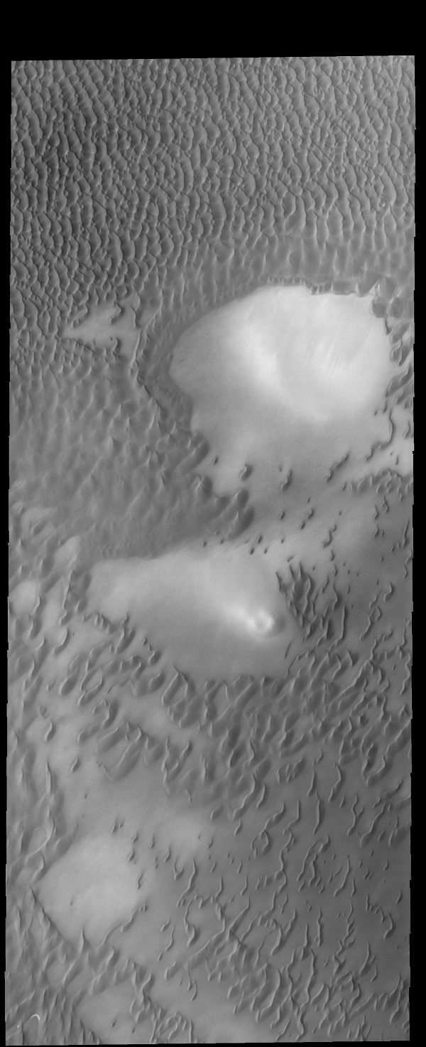 The dunes in this image captured by NASA's 2001 Mars Odyssey spacecraft are part of Olympia Undae.