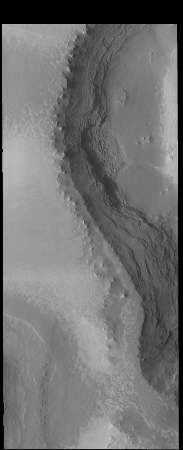 This image captured by NASA's 2001 Mars Odyssey spacecraft shows the layering of the north polar cap.