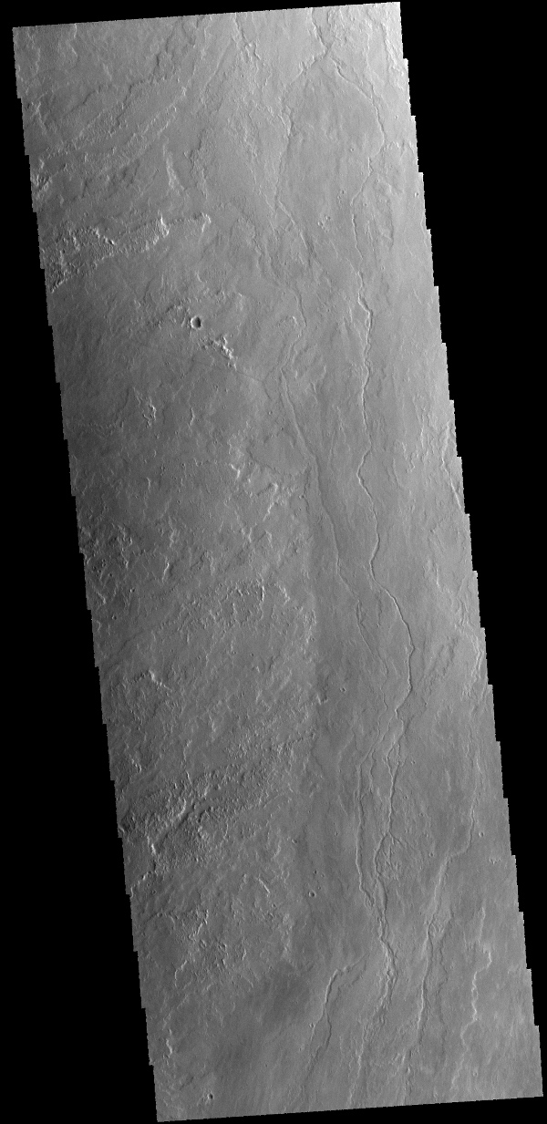 The lava flows and channel in this image captured by NASA's 2001 Mars Odyssey spacecraft are located on the eastern margin of Olympus Mons.
