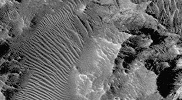 Complex variations in dune forms within Hebes Chasma. This southern subframe image, frame 3506, is a 2.3 x 3.6 km area centered near 0.8 degrees south, 76.3 degrees west, taken by NASA's Mars Global Surveyor Orbiter.