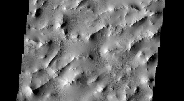 Lycus Sulci is a complex area of ridges and valleys that surrounds the northern and western margins of Olympus Mons on Mars. How it formed is unknown. This image was taken by NASA's Mars 2001 Odyssey spacecraft.