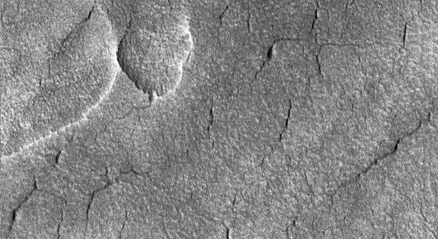 NASA's Mars Global Surveyor acquired this image in June 1999 showing a tiny portion of the martian floor of northern plains craters. Utopia Planitia crater, cracked and pitted, is shown on the right.