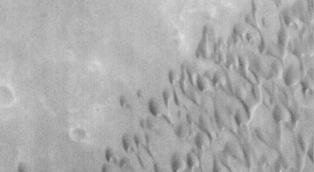 NASA's Mars Global Surveyor acquired this image on June 14, 1998. Shown here is part of the dark surface on the floor of Herschel Basin consisting of a field of sand dunes.