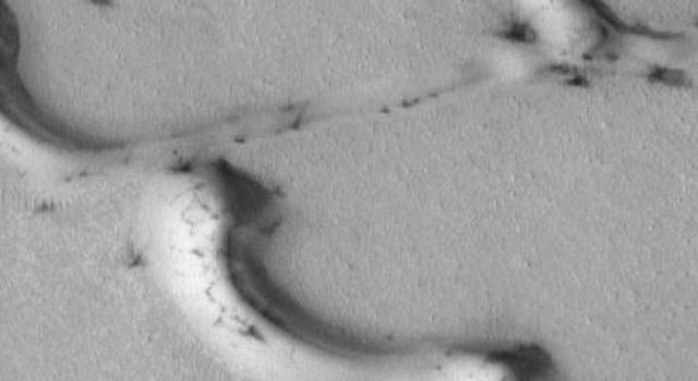 This image from NASA's Mars Global Surveyor taken on August 22, 1998 shows dark streaks emanating from dark patches among Mars' north polar dunes.