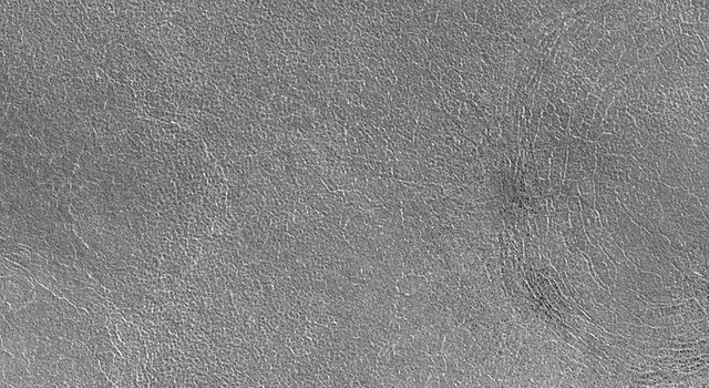This image captured during March 1999 by NASA's Mars Global Surveyor shows summertime in the northern hemisphere of Mars with the northern plains clearly in view. The image is located near Lomonosov Crater on the Vastitas Borealis plain.
