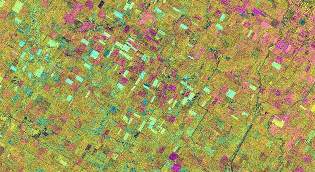 Space Radar Image of Altona, Manitoba, Canada