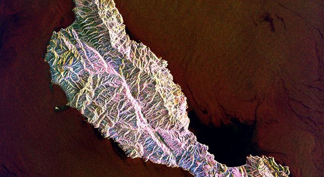 This space radar image from NASA's Spaceborne Imaging Radar-C/X-band Synthetic Aperture shows the rugged topography of Santa Cruz Island, part of the Channel Islands National Park in the Pacific Ocean off the coast of Santa Barbara and Ventura, Calif.