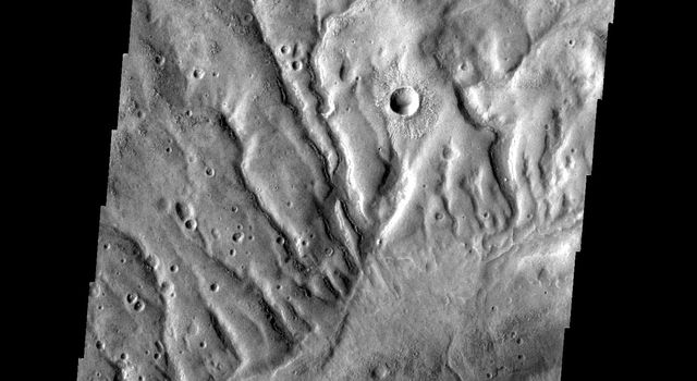 The dissected surface seen in this image from NASA's 2001 Mars Odyssey spacecraft is near Warrego Valles on Mars.