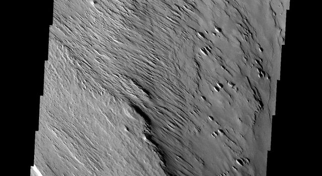 These yardangs are being formed by wind erosion of the Memnonia Sulci deposits on Mars as seen by NASA's 2001 Mars Odyssey.
