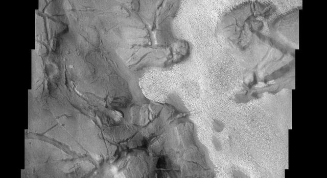 This image of part of Aram Chaos on Mars shows two different surface textures with distinctly different brightnesses. The lighter layer appears to be on top (therefore younger) than the darker surface as seen by NASA's 2001 Mars Odyssey.