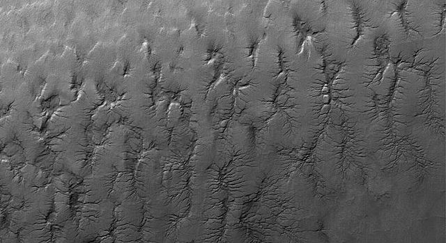 NASA's Mars Global Surveyor shows cracked surfaces in the south polar layered terrain of Mars. The cracks in this scene have formed complex dendritic arrays.