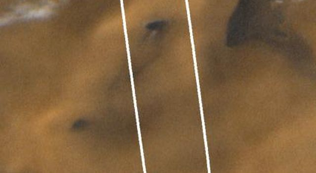 NASA's Mars Global Surveyor shows late spring in this portion of the martian south polar region. Dark patches within the ellipse are sand and small fields of windblown sand dunes. The bright patches toward the top of the image are frost.
