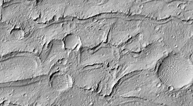 NASA's Mars Global Surveyor shows a field of parallel ridges north of a dune field in a wind-eroded material named the Apollinaris Sulci on Mars.