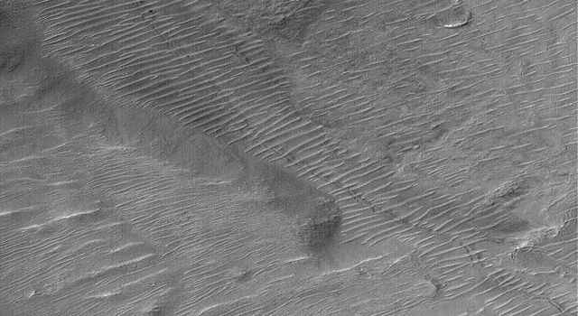 NASA's Mars Global Surveyor shows channels and Gullies in Nirgal Vallis on Mars.