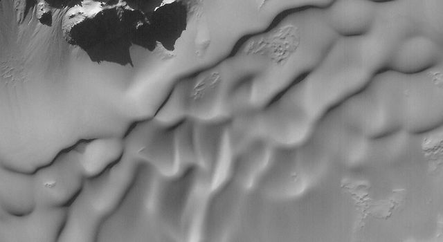 NASA's Mars Global Surveyor shows sand dunes and small gullies, possibly carved by water, on the slopes of some of the peaks in Hale Crater on Mars.