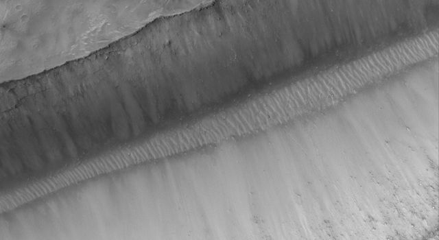 NASA's Mars Global Surveyor shows a portion of a trough in the Sirenum Fossae region on Mars. On the floor and walls of the trough, large, truck- to house-sized, boulders are observed at rest.