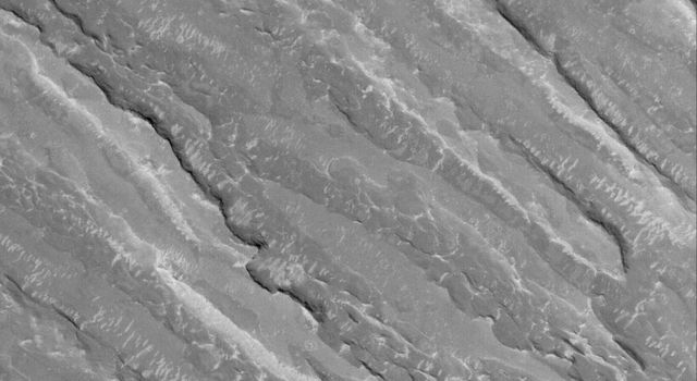NASA's Mars Global Surveyor shows alternating ridges and troughs exposed by erosion of material interpreted to be sedimentary rock in the Aeolis region of Mars.