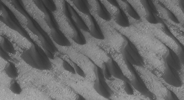 NASA's Mars Global Surveyor shows dark, windblown sand dunes on the floor of Brashear Crater in the southern hemisphere of Mars.