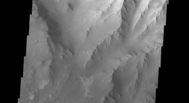 The landslide in the center of this image from NASA's 2001 Mars Odyssey spacecraft occurred in the Melas Chasma region of Valles Marineris on Mars.