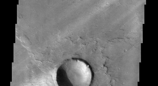 These windstreaks are located on the downwind side of impact craters located in Syrtis Major on Mars as seen by NASA's 2001 Mars Odyssey spacecraft.