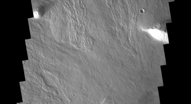 This image from NASA's 2001 Mars Odyssey spacecraft shows just a small part of the eastern flank of Olympus Mons on Mars. On the far left side of the image a small volcanic cone can be seen. The shadow helps to identify this feature.