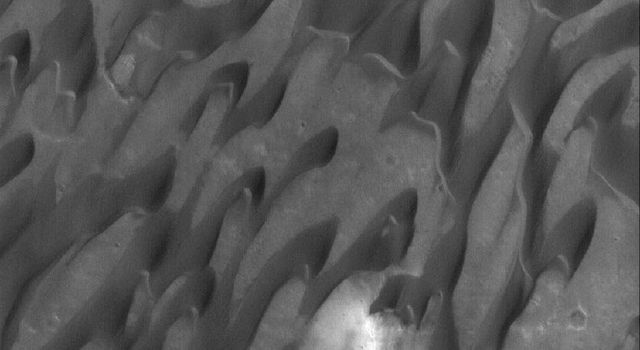 NASA's Mars Global Surveyor shows dark, windblown sand dunes in Herschel Crater on Mars.