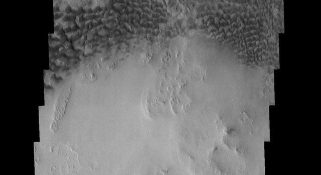 These dunes occur on the floor of Holden Crater on Mars as seen by NASA's 2001 Mars Odyssey spacecraft.