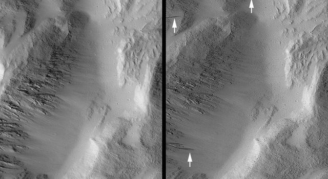 NASA's Mars Global Surveyor shows a portion of Lycus Sulci, a rugged, ridged terrain north of the giant Olympus Mons volcano on Mars. Dark streaks considered to result from the avalanching of dry, fine, bright dust.