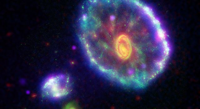 This false-color composite image shows the Cartwheel galaxy, where the first ripple appears as an ultraviolet-bright blue outer ring.