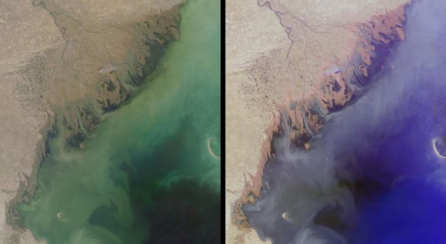 The MISR instrument aboard NASA's Terra spacecraft captured this stereo image of Russia's Volga River, the largest river system in Europe. 3D glasses are necessary to view this image.