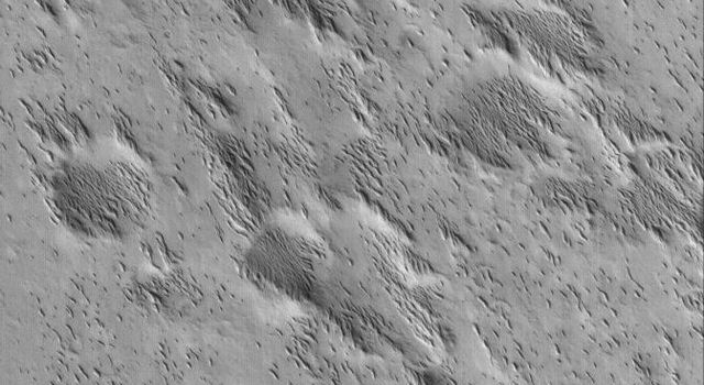 NASA's Mars Global Surveyor shows small yardangs formed by wind erosion of a material that once completely covered everything in this scene. These landforms are located in southern Amazonis Planitia on Mars.