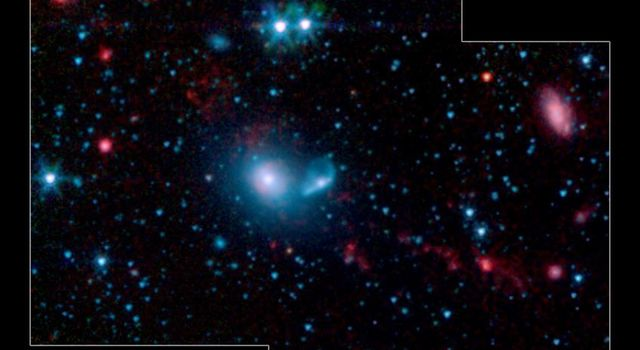 This false-color infrared image from NASA's Spitzer Space Telescope shows little 'dwarf galaxies' forming in the 'tails' of two larger galaxies that are colliding together.