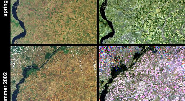 These images from NASA's Terra satellite were captured on May 31 and July 18, 2002 and show Russia's Saratov Oblast (province), located in the southeastern portion of the East-European plain, in the Lower Volga River Valley.