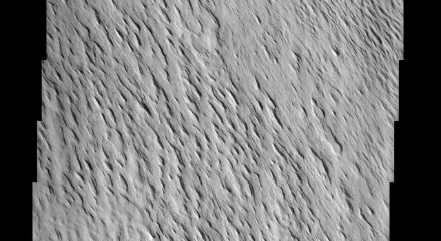 Remarkable variations in the erosion of the Medusae Fossae Formation are shown in this scene from NASA's Mars Odyssey spacecraft. In this region, the surface has been eroded by the wind into a series of linear ridges called yardangs.