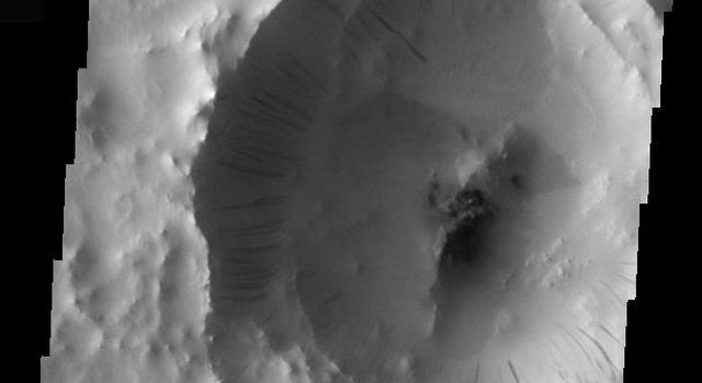 This image from NASA's Mars Odyssey spacecraft shows that dust avalanches, also called slope streaks, occur on many Martian terrains. These dust avalanches are located within a small crater inside Tikhonravov Crater.