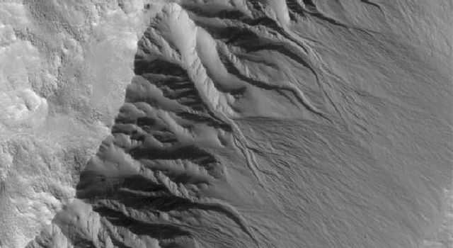 NASA's Mars Global Surveyor shows gullies in the southeast-facing wall of an impact crater in northwestern Acidalia Planitia on Mars. Gullies are common in southern middle-latitude craters.