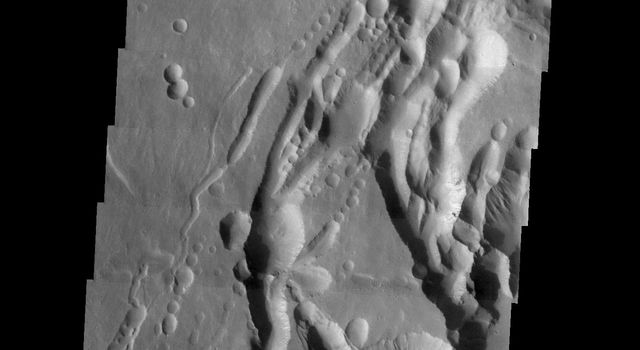 This image from NASA's Mars Odyssey spacecraft shows Arsia Mons, located on the southern flank of the volcano adjacent to the NE trending feature. There has been a significant amount of collapse features formed in this region.