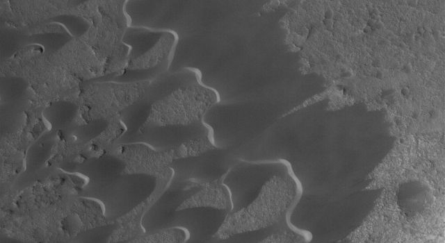 NASA's Mars Global Surveyor shows dark, windblown sand dunes in the caldera of Nili Patera, a volcanic crater in Syrtis Major on Mars.