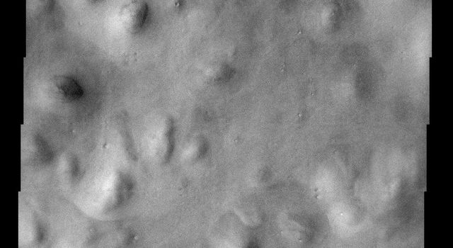 Hills abound in this portion of Mars imaged by NASA's Mars Odyssey spacecraft and located in the Vastitas Borealis region of the high northern plains. These hills are part of Scandia Colles.
