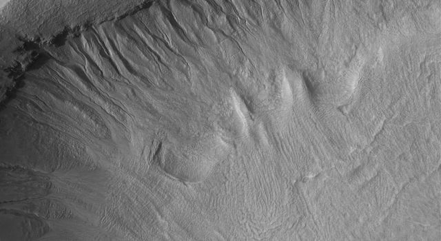 NASA's Mars Global Surveyor shows a gullied crater wall in the Terra Sirenum region of Mars. Fluids formed the gully channels and deposited debris in aprons at the base of the crater wall.