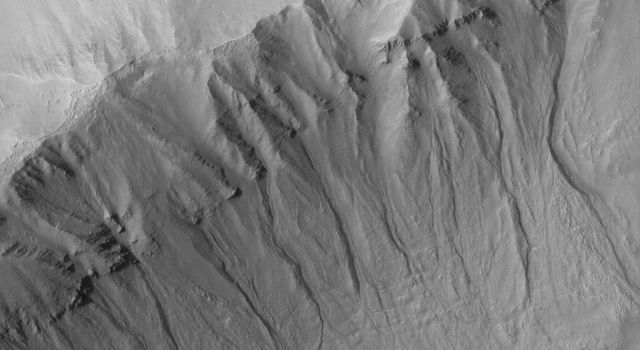 NASA's Mars Global Surveyor shows gullies cut into layered rock and debris on the wall of a south middle-latitude crater on Mars.