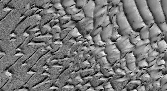 NASA's Mars Global Surveyor shows frost-covered sand dunes in the martian north polar region.