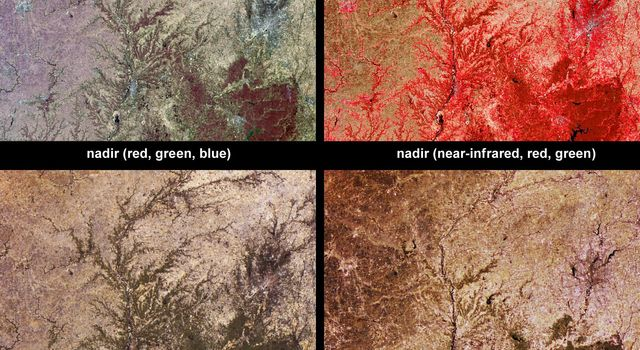 Vegetation across southeast Illinois and central Indiana is shown in this set of multispectral and multiangle images from NASA's Terra spacecraft, captured on April 5, 2004.